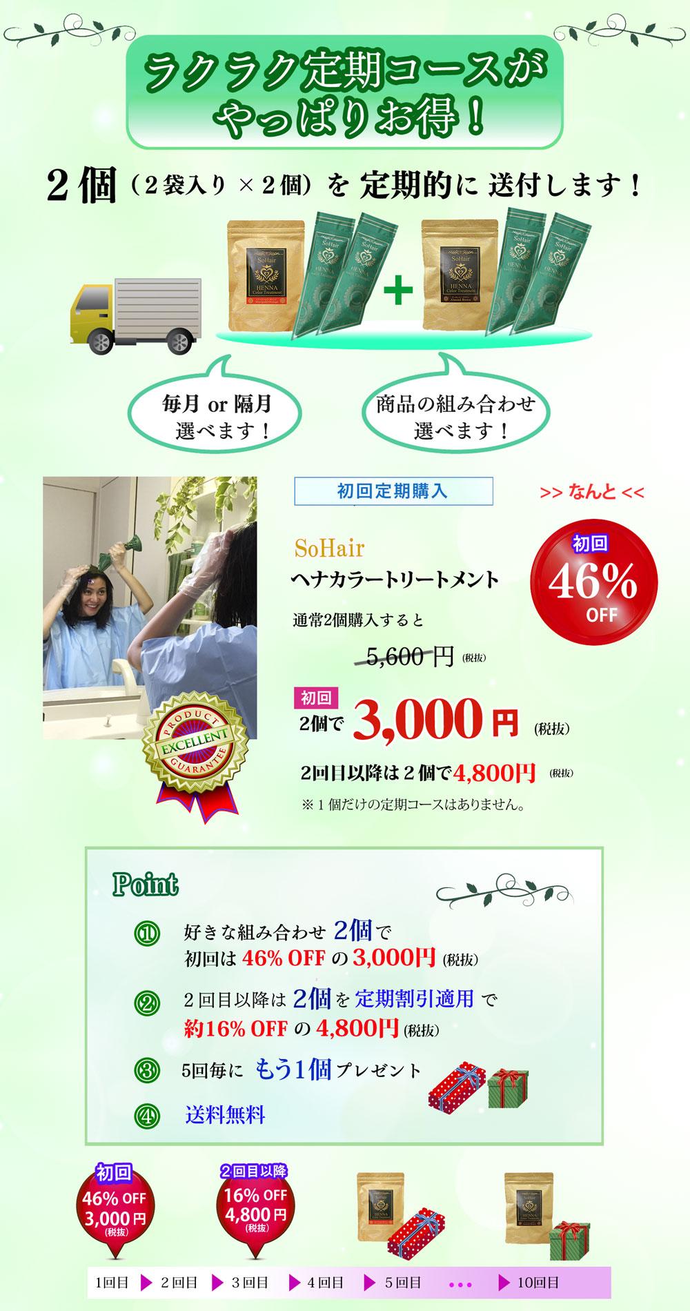 ヘナ定期コース紹介